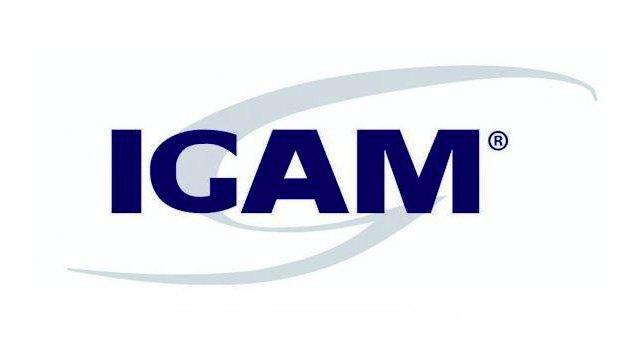 Logo da Igam – Gestão Pública case de marketing da Agência Kaizen